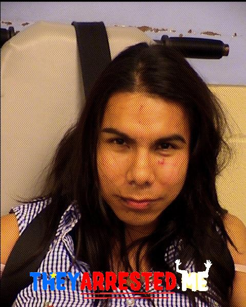 Arcangel Sanchez-Garcia (TRAVIS CO SHERIFF)