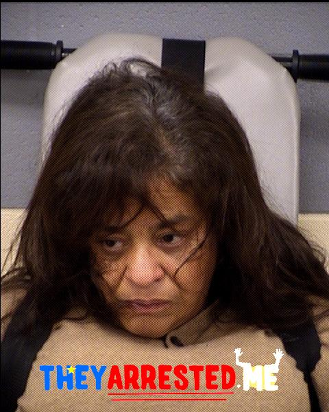 Diana Soler-Mendoza (TRAVIS CO SHERIFF)